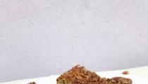 Bezlepkový hruškový koláč s oříšky